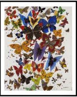 digigraphie vol de papillon