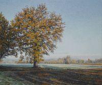 13_arbre_hiver